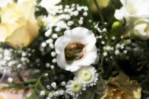 Свадебное фото 51