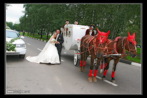 Свадебное фото 79
