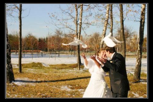 Свадебное фото 84